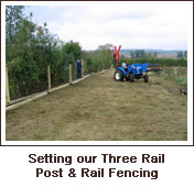 Click to view. Setting our Three Rail Post & Rail Fencing
