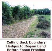 Click to view. Cutting Back Boundary Hedges to Regain Land Before Fence Erection